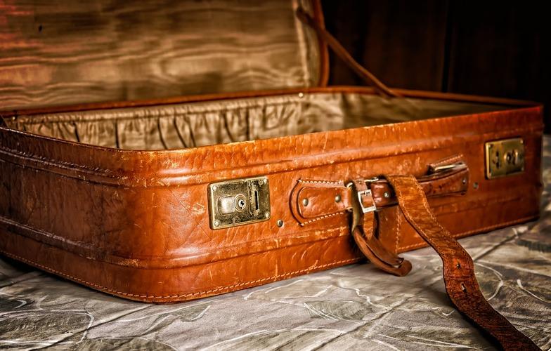 Extra_large_luggage-3297015_1280