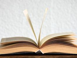 Small_book-2306181_1280