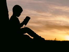 Small_canva_-_silhouette_of_a_kid_reading_at_sunset