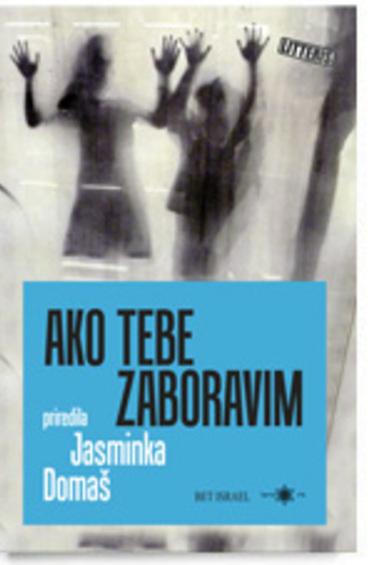Book_knj_domas