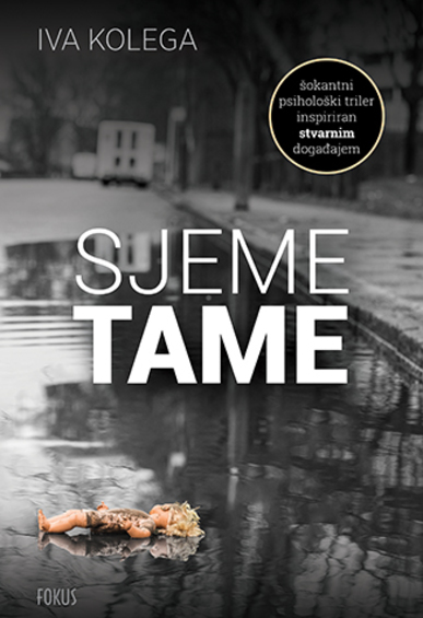 Book_sjeme_tame_2d