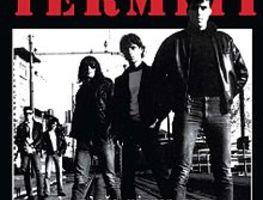 Small_termiti