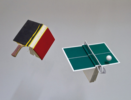 Small_table_tennis_books