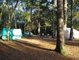 Small_izvidjacki_kamp
