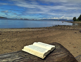 Small_book_on_the_beach
