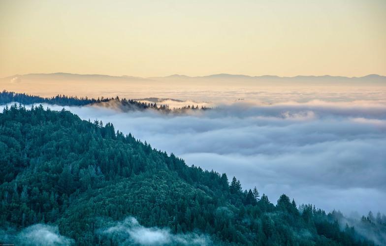 Extra_large_mountain_fog