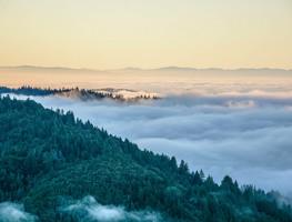 Small_mountain_fog