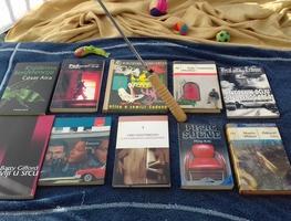 Small_knjige_za_pla_u_2017