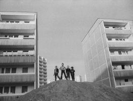 Small_berlin