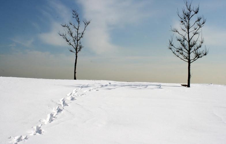 Extra_large_snijeg