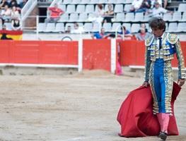 Small_torero-389344_1280