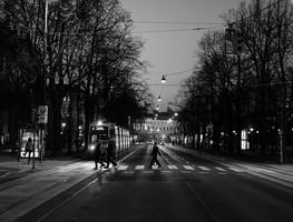 Small_viennav