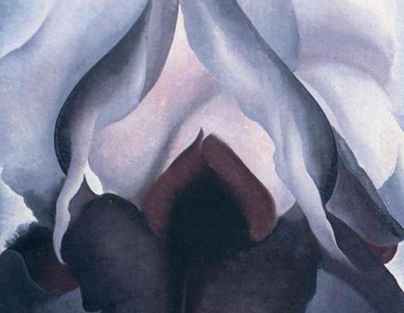 Large_black-iris-1.jpg_large