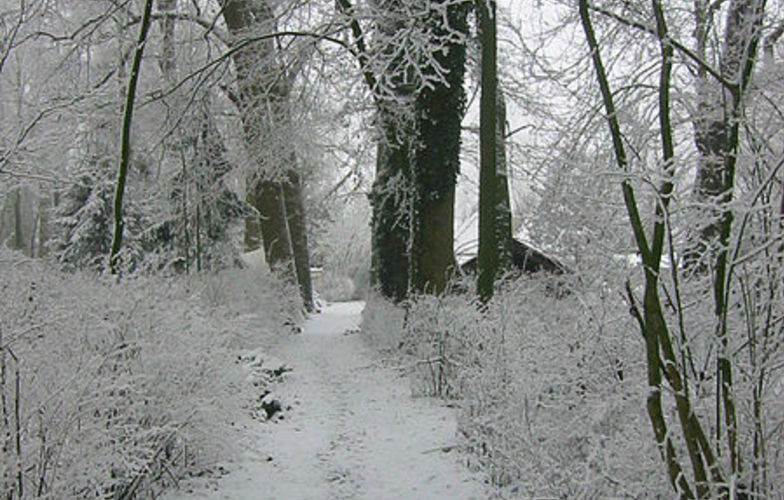 Extra_large_the_footpath_to_my_previous_home_on_the_wickenburgh_estate_near_utrecht_holland._on_many_winter_days__the_only_footsteps_in_the_snow_were_mine._plus_the_ones_from_animals.__9443486862_